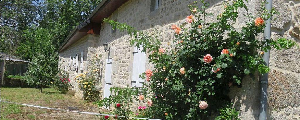 , A proximité de l*étang de Flayat - Creuse